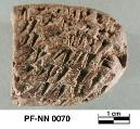 Persepolis Fortification tablet NN 0070