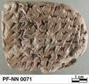 Persepolis Fortification tablet NN 0071