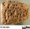 Persepolis Fortification tablet NN 0081