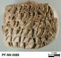Persepolis Fortification tablet NN 0089