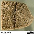 Persepolis Fortification tablet NN 0803