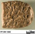 Persepolis Fortification tablet NN 1000